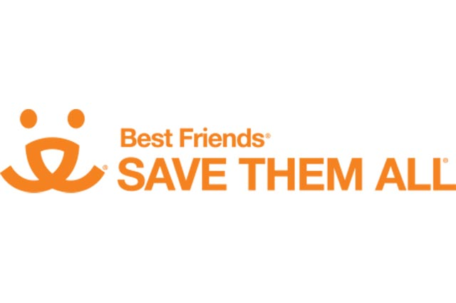 Best Friends - save them all